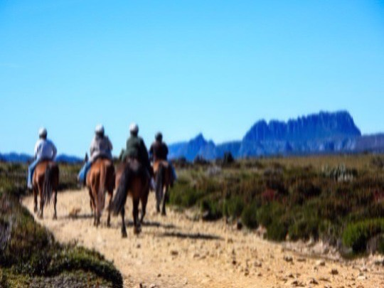 Your tour begins when we pick you up from your Cradle Mountain accommodation or reception at Cradle Mountain Hotel. 